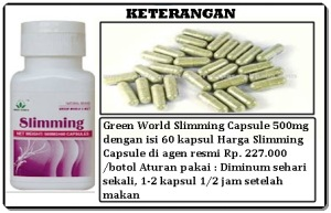 obat penurun berat badan yang aman